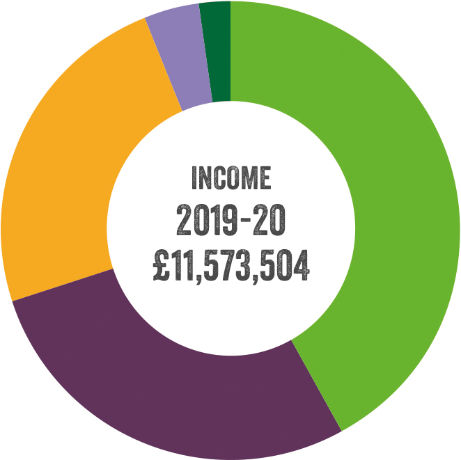 Pie chart illustrating income for 2019-2020