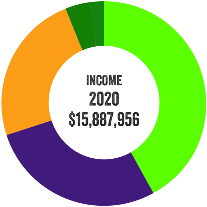 Pie chart illustrating income for 2020