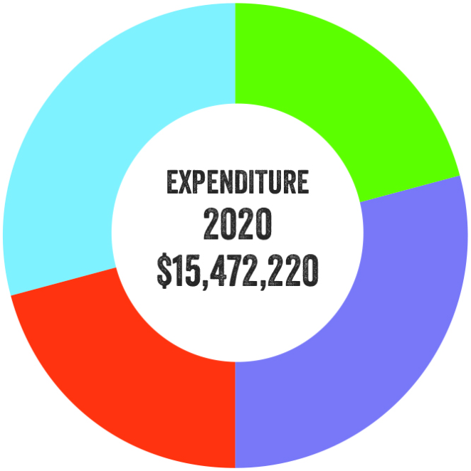Pie chart illustrating expenditure for 2020